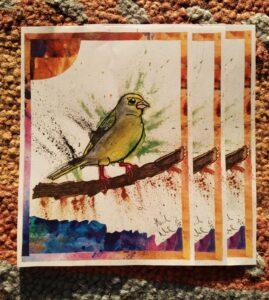 greenfinch prints